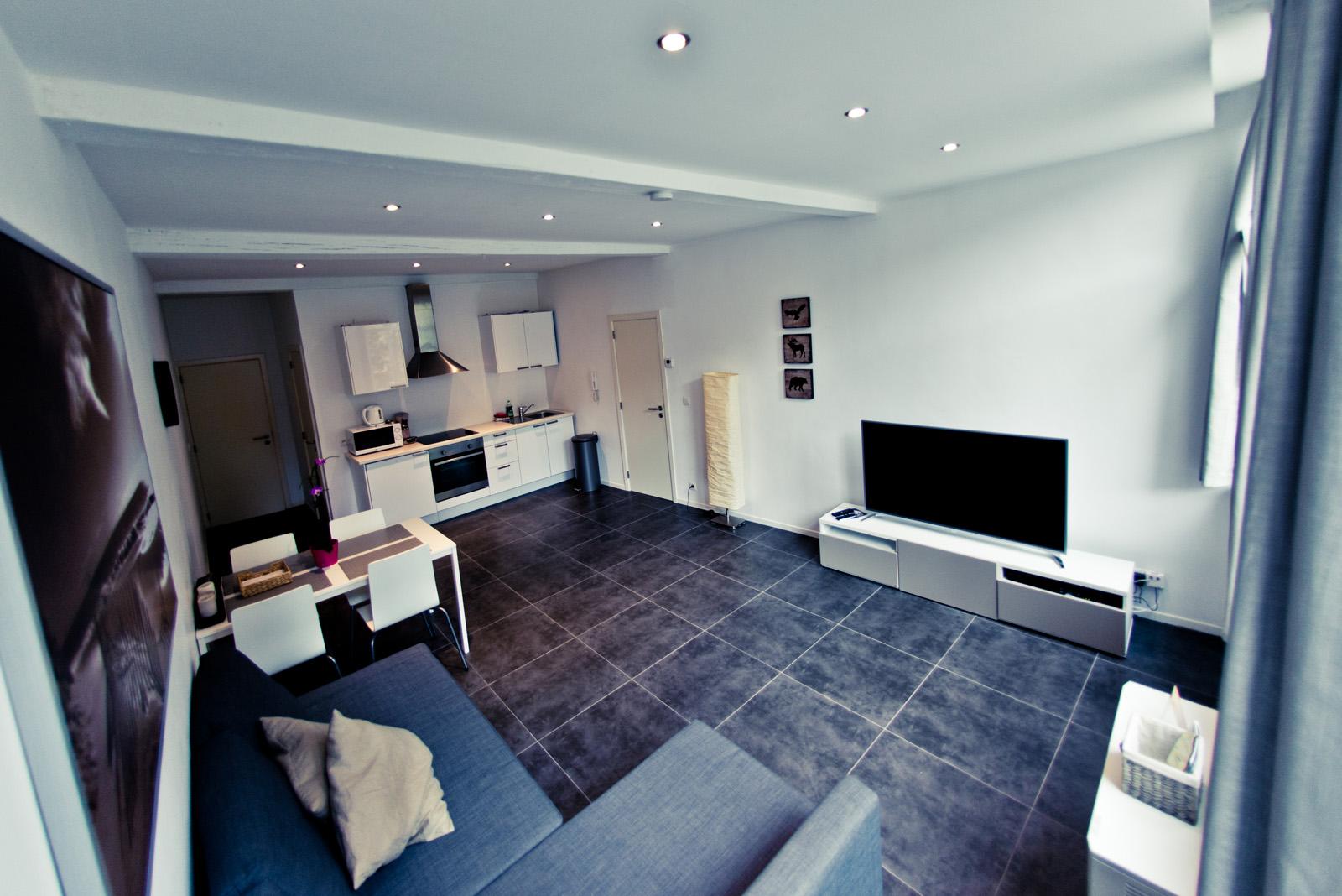 Nos logements les suites de nanesse officiel appart for Appart hotel 95